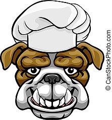 caractère, chef cuistot, mascotte, bouledogue, dessin animé