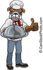 caractère, dessin animé, mascotte, bouledogue, chef cuistot