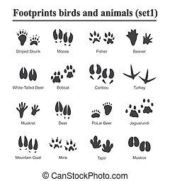 caractères, animaux, variété, set., patte, vie sauvage, illustration, animaux, vecteur, noir, empreinte, animal, silhouette, oiseaux, encombrements