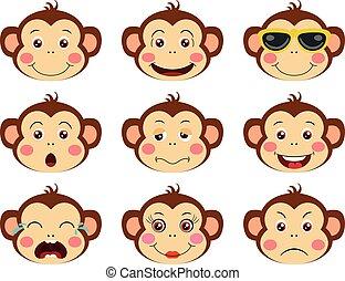 caractéristique, faces, différent, singes, expressions