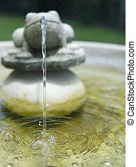 característica de agua