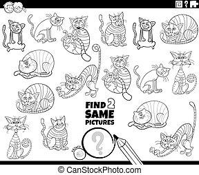caracteres, dos, hallazgo, juego, color, mismo, gatos, libro