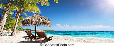 caraibico, spiaggia palma, con, legno, sedie, e, paglia, ombrello, -, idilliaco, isola