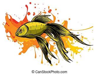 carassius, ベクトル, goldenfish, 水族館, イラスト