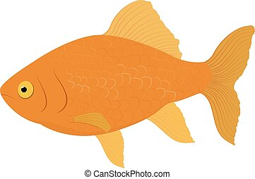 gold fish . Fish isolated on a white background. Vector ...