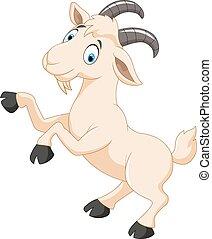 carattere, cartone animato, goat