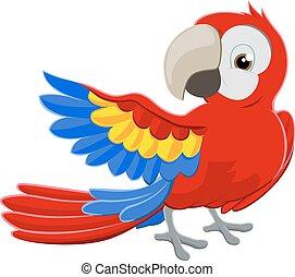 carattere, cartone animato, pappagallo