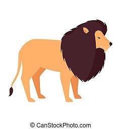 carattere, leone, animale africano, selvatico