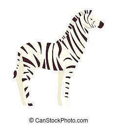 carattere, zebra, animale africano, selvatico