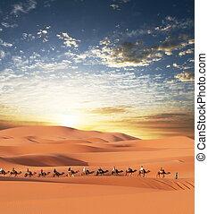Caravan in desert - Caravan in Sahara desert