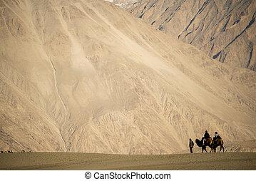 caravan travellers riding camels Nubra Valley Ladakh ,India - September 2014