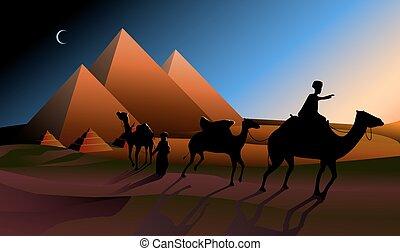 caravana, camelos, pyramids.