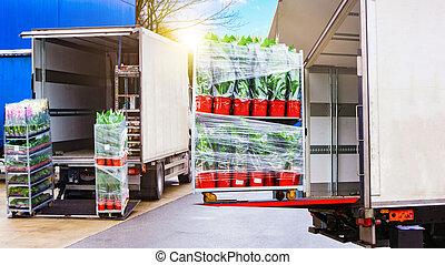 caravane, chargement, transport, europe, camion, fret, là
