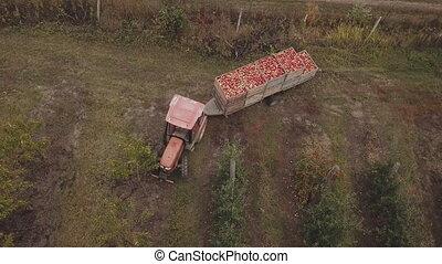 caravane, tracteur, pommes, porte