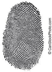Carbon Fingerprint - Carbon fingerprint made from a photo of...