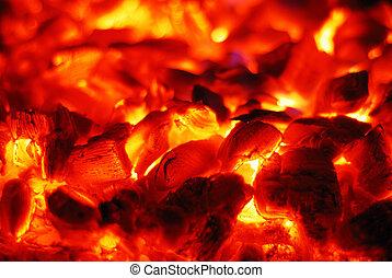 carbones, vivo, horno