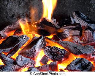 carboni, luminoso, bruciatura, fiamma, betulla