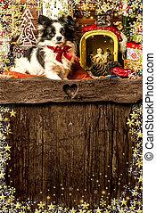 card., 赤ん坊, クリスマス, 挨拶, jesus., 犬