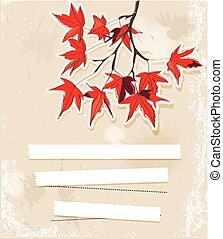 Card with autumn leaves.
