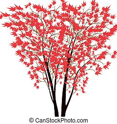 Card with autumn maple tree. Red maple trees in the middle. Japanese red maple.