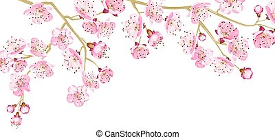 Card with cherry blossom.