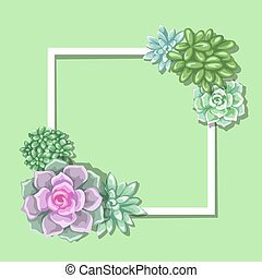 Card with succulents. Echeveria, Jade Plant and Donkey...