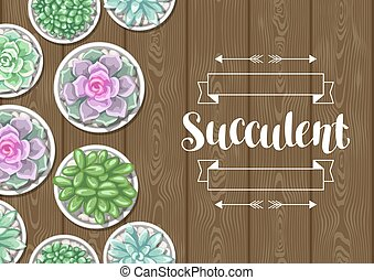 Card with succulents in pots. Echeveria, Jade Plant and...