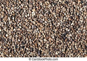 cardamomo, negro, semillas, (or, cardamon)