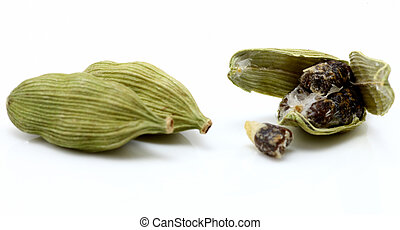 cardamon, 種