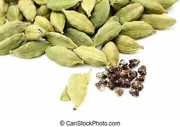 cardamon, semillas
