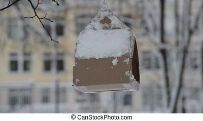 Cardboard bird feeder hangs on tree in winter