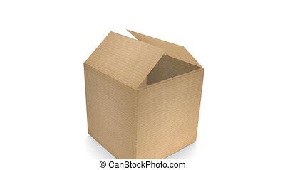 Cardboard Box with Zoom