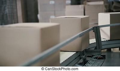 Cardboard boxes on conveyor belt in factory. Clip....