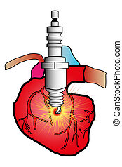 cardiac system - illustration of a heart in cardiovascular...