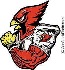cardinal football player - cardinal mascot football player
