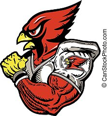 cardinal football player - cardinal mascot football player