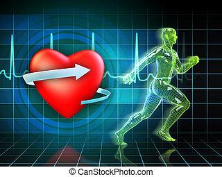 cardio, výcvik