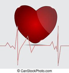 cardiograma, vetorial, heart., illustration.