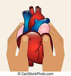 cardiology design, vector illustration eps10 graphic