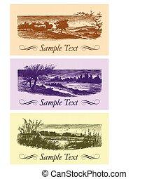 cards, vinhøst, sæt, (vector)