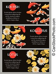 Cards with koi fish and lotus