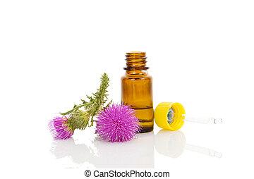 Carduus flower essential oil. - Medicine carduus flower oil...