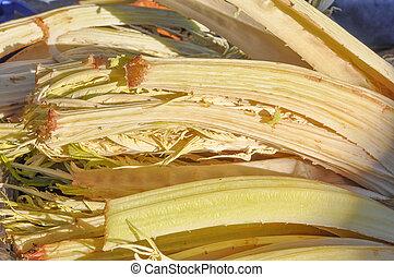 Carduus vegetables healthy vegetarian food cuisine