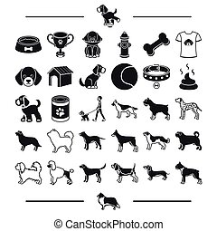 care, accessories, dog breeding and other web icon in black style.dachshund, Shorthair, textiles icons in set collection.
