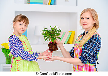 care of plants