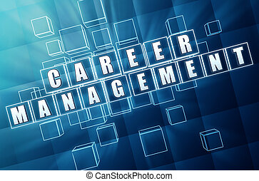 career management in blue glass cubes