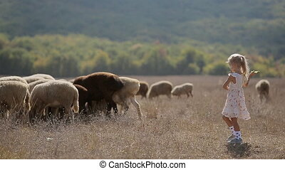 Carefree little girl throws meal to sheep grazing in the meadow
