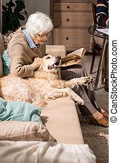 caresser, chien, divan, personne agee, dame, heureux