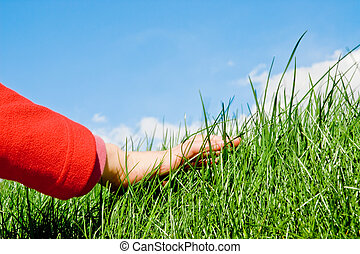 child hand caressing softly the grassy surface