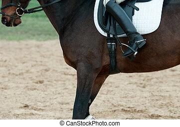 cargador del montar a caballo
